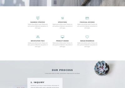 consultant-process